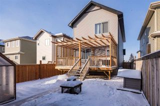 Photo 44: 54 STRAWBERRY Lane: Leduc House for sale : MLS®# E4228569