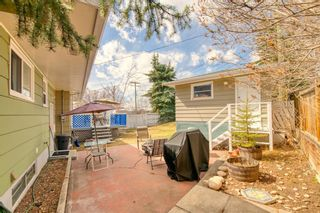 Photo 34: 11 Calandar Road NW in Calgary: Collingwood Detached for sale : MLS®# A1091060