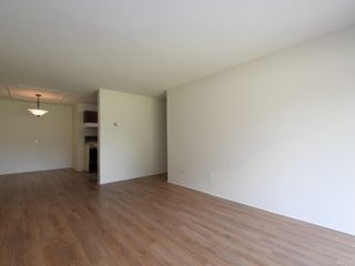 Photo 5: 101 1680 Poplar Ave in : SE Mt Tolmie Condo for sale (Saanich East)  : MLS®# 856970