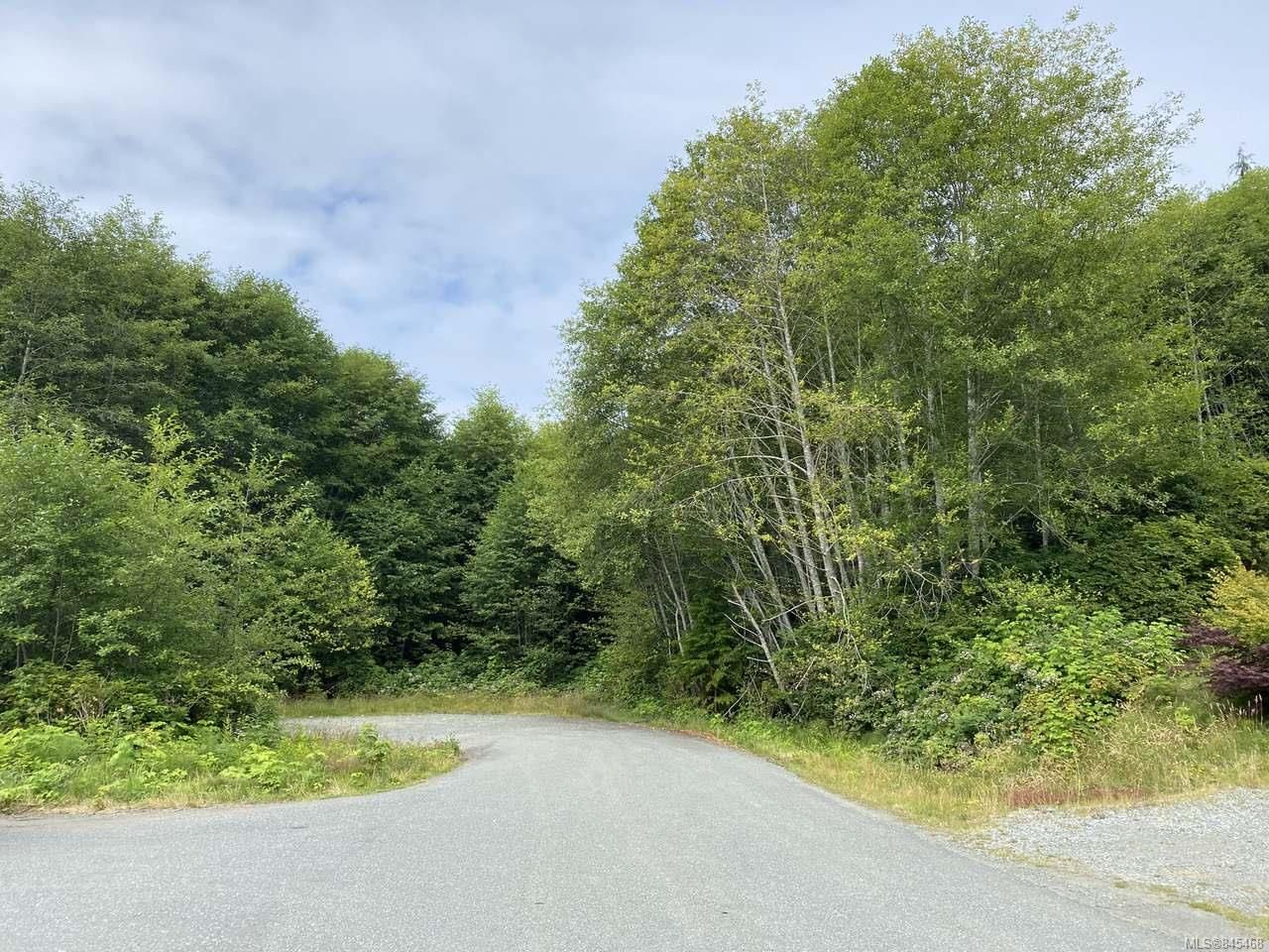 Photo 6: Photos: 0 Harbour Rd in PORT HARDY: NI Port Hardy Land for sale (North Island)  : MLS®# 845468