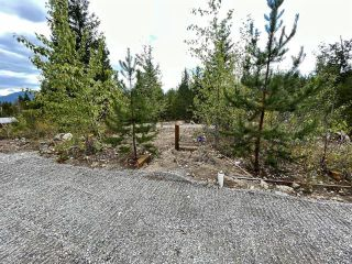 Photo 7: 292 Terry Road, in Enderby: Vacant Land for sale : MLS®# 10239679