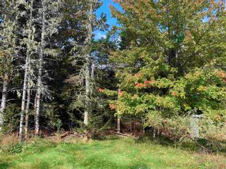 Photo 14: 123 Cross Road #2 in South Rawdon: 105-East Hants/Colchester West Residential for sale (Halifax-Dartmouth)  : MLS®# 202125581