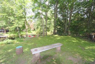Photo 33: 11 Duncan Drive in Kawartha Lakes: Rural Eldon House (Bungalow-Raised) for sale : MLS®# X5341936