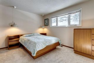 Photo 22: 6412 Dalton Drive NW in Calgary: Dalhousie Detached for sale : MLS®# A1071648
