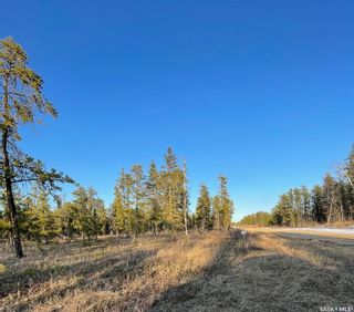 Photo 5: Over 1 acre lots in Hudson Bay: Lot/Land for sale : MLS®# SK850482