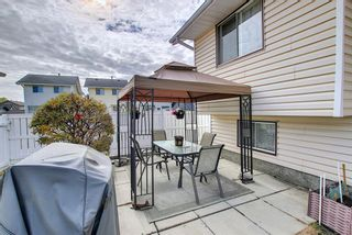 Photo 14: 305 Martinwood Place NE in Calgary: Martindale Detached for sale : MLS®# A1038589