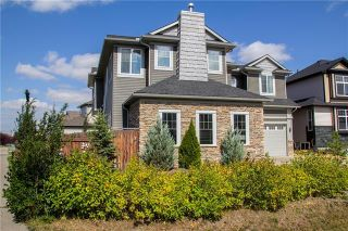 Photo 48: 702 CANOE Avenue SW: Airdrie Detached for sale : MLS®# C4287194