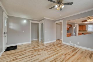 Photo 9: 355 Whitman Place NE in Calgary: Whitehorn Detached for sale : MLS®# A1046651