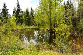 Photo 33: 2847 PTARMIGAN Road in Smithers: Smithers - Rural House for sale (Smithers And Area (Zone 54))  : MLS®# R2457122