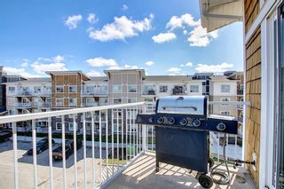 Photo 26: 1411 302 Skyview Ranch Drive NE in Calgary: Skyview Ranch Apartment for sale : MLS®# A1102866