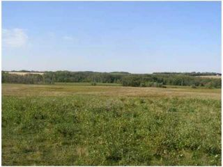 Photo 5: SW COR TWP RD 534 & RR 222: Rural Strathcona County Rural Land/Vacant Lot for sale : MLS®# E4251108