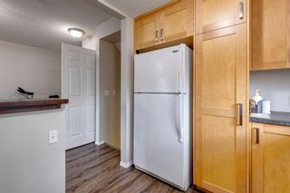 Photo 28: 108 Evermeadow Manor SW in Calgary: Evergreen Detached for sale : MLS®# A1142807