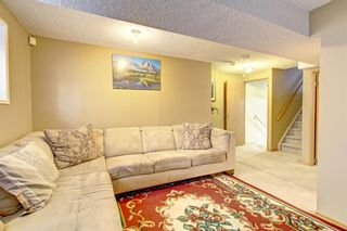 Photo 24: 25 Martinview Crescent NE in Calgary: Martindale Detached for sale : MLS®# A1107227