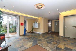 Photo 4: 307 1510 Hillside Ave in VICTORIA: Vi Hillside Condo for sale (Victoria)  : MLS®# 837064