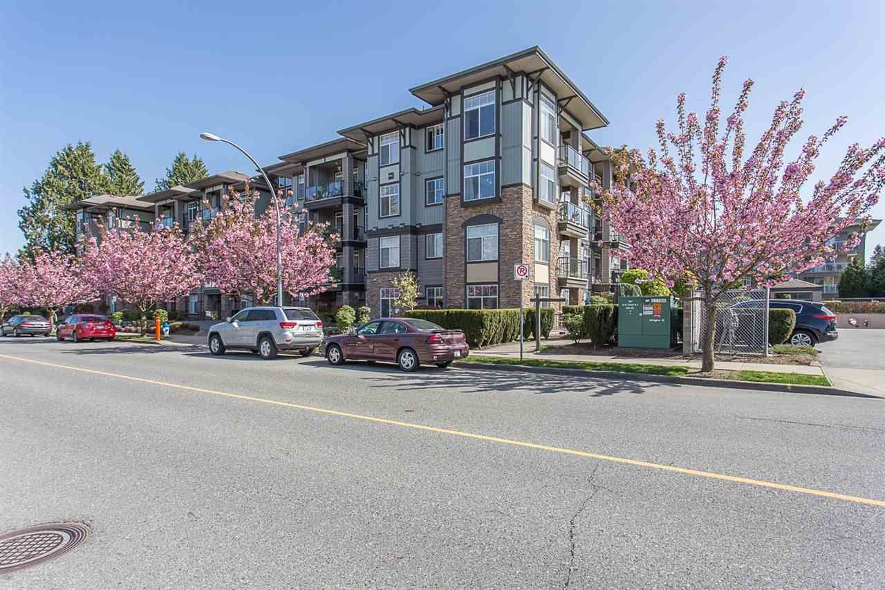 """Photo 1: Photos: 409 33338 MAYFAIR Avenue in Abbotsford: Central Abbotsford Condo for sale in """"The Sterling"""" : MLS®# R2346998"""