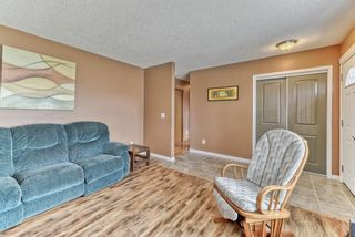 Photo 18: 424 Cole Crescent: Carseland Detached for sale : MLS®# A1106001