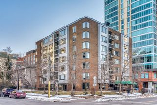 Photo 23: 450 310 8 Street SW in Calgary: Eau Claire Apartment for sale : MLS®# A1060648