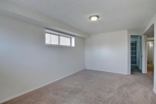 Photo 31: 66 Erin Green Way SE in Calgary: Erin Woods Detached for sale : MLS®# A1094602