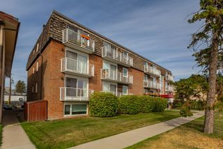 Photo 2: 104 17 13 Street NW in Calgary: Hillhurst Apartment for sale : MLS®# A1058350
