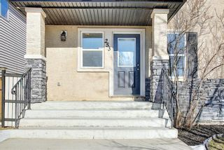 Photo 2: 253 Elgin Way SE in Calgary: McKenzie Towne Detached for sale : MLS®# A1087799
