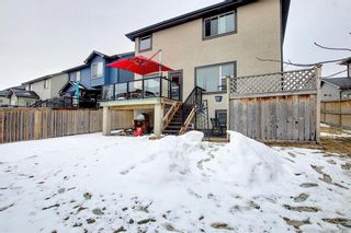 Photo 44: 164 Aspenmere Close: Chestermere Detached for sale : MLS®# A1130488