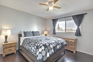Photo 19: 16730 109A Street in Edmonton: Zone 27 House for sale : MLS®# E4244438