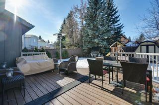 Photo 6: 712 Hendra Crescent: Edmonton House for sale : MLS®# E4229913