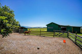 Photo 13: 29226 HUNTINGDON Road in Abbotsford: Poplar House for sale : MLS®# R2595302