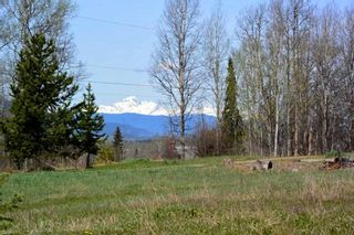 Photo 15: 100 LAIDLAW Road in Smithers: Smithers - Rural House for sale (Smithers And Area (Zone 54))  : MLS®# R2455012