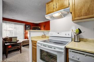 Photo 7: 104 420 GRIER Avenue NE in Calgary: Greenview House for sale