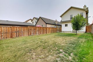Photo 46: 159 Copperstone Grove SE in Calgary: Copperfield Detached for sale : MLS®# A1138819