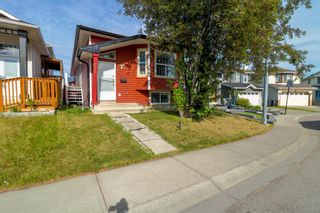 Main Photo: 235 Coral Springs Circle NE in Calgary: Coral Springs Detached for sale : MLS®# A1121983