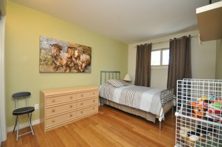 Photo 38: 70059 Roscoe Road in Dugald: Birdshill Area Residential for sale ()  : MLS®# 1105110