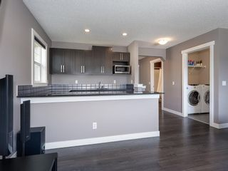 Photo 25: 155 Skyview Shores Crescent NE in Calgary: Skyview Ranch Detached for sale : MLS®# A1110098