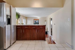 Photo 20: 139 Cantrell Place SW in Calgary: Canyon Meadows Detached for sale : MLS®# A1096230