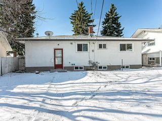 Photo 39: 40 Fyffe Road SE in Calgary: Fairview Detached for sale : MLS®# A1087903
