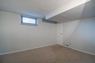 Photo 22: 503 35 Street NW in Calgary: Parkdale Detached for sale : MLS®# A1115340