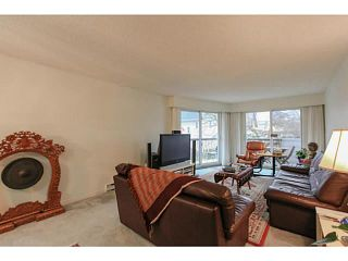 Photo 2: 211 3353 Heather Street in Vancouver: Cambie Condo  (Vancouver West)  : MLS®# V1101264