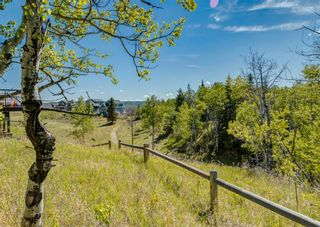Photo 14: 245 COTTAGECLUB Crescent in Rural Rocky View County: Rural Rocky View MD Residential Land for sale : MLS®# A1116349