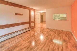 "Photo 3: 101 2416 W 3RD Avenue in Vancouver: Kitsilano Condo for sale in ""Landmark Reef"" (Vancouver West)  : MLS®# R2191512"