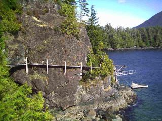 Photo 6: LT 2 Catface Mountain in TOFINO: PA Tofino Land for sale (Port Alberni)  : MLS®# 827016