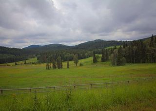 Photo 4: 38 Horseshoe Bend: Rural Foothills County Land for sale : MLS®# C4197142