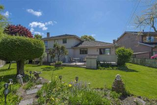 Photo 19: 10771 ROSETTI Court in Richmond: Woodwards House for sale : MLS®# R2582074