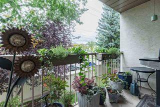Photo 27: 205 11218 80 Street in Edmonton: Zone 09 Condo for sale : MLS®# E4230603