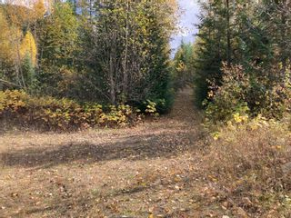 Photo 12: DL3592 & DL4084 1020 Forest Service Road in Seymour Arm: syemour arm Land Only for sale (shuswap)  : MLS®# 10241424