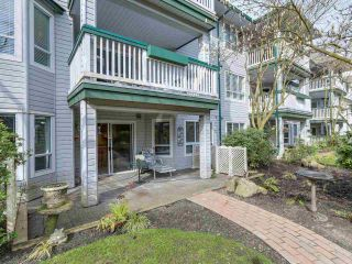 Photo 16: 103 1133 E 29TH STREET in North Vancouver: Lynn Valley Condo for sale : MLS®# R2047477