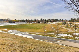 Photo 26: 2824 66 Street NE in Calgary: Pineridge Detached for sale : MLS®# C4274785