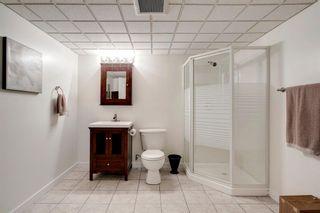 Photo 30: 260 Douglasbank Place SE in Calgary: Douglasdale/Glen Detached for sale : MLS®# A1042919