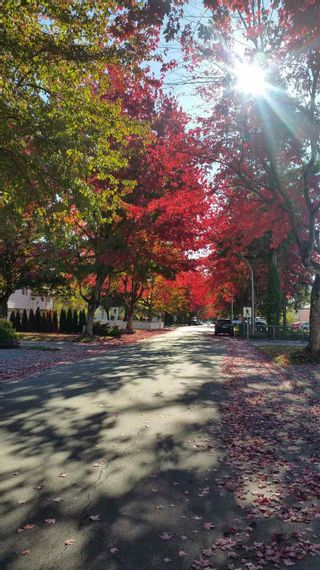 Photo 11: 6295 SUNDANCE Drive in Surrey: Cloverdale BC 1/2 Duplex for sale (Cloverdale)  : MLS®# R2296791