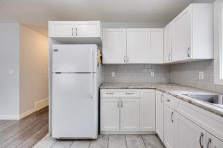 Photo 13: 11235 52 Street in Edmonton: Zone 09 House for sale : MLS®# E4252061
